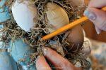 Easter Egg Topiary DIY for easy Spring home decor