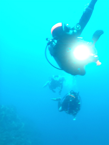 20111210miko (6)