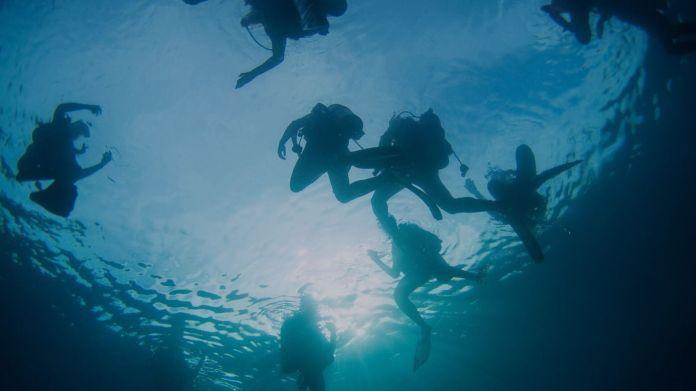 Padi I Discover Scuba Diving Experience I Raja Ampat Meridian Adventure Raja Ampat Indonesia Scuba Diving Marina Resort