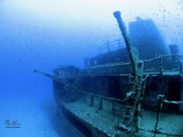 DiveBase_Um_El_Faroud_Wreck