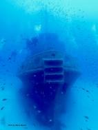 Deep dive in Malta