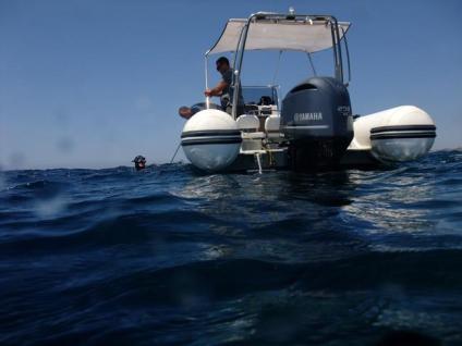 Freediving Workshop in Malta