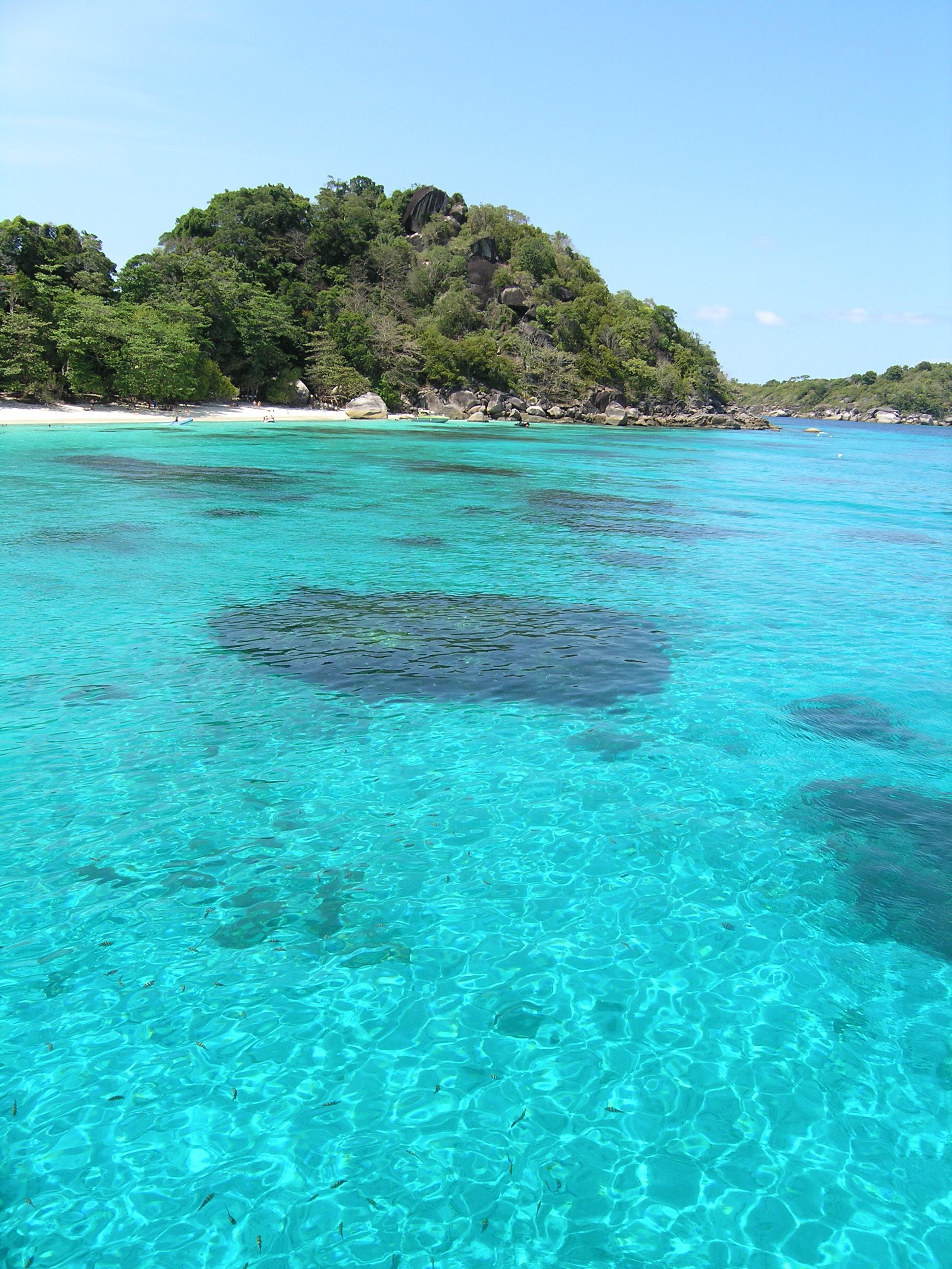 Island #4 Reef