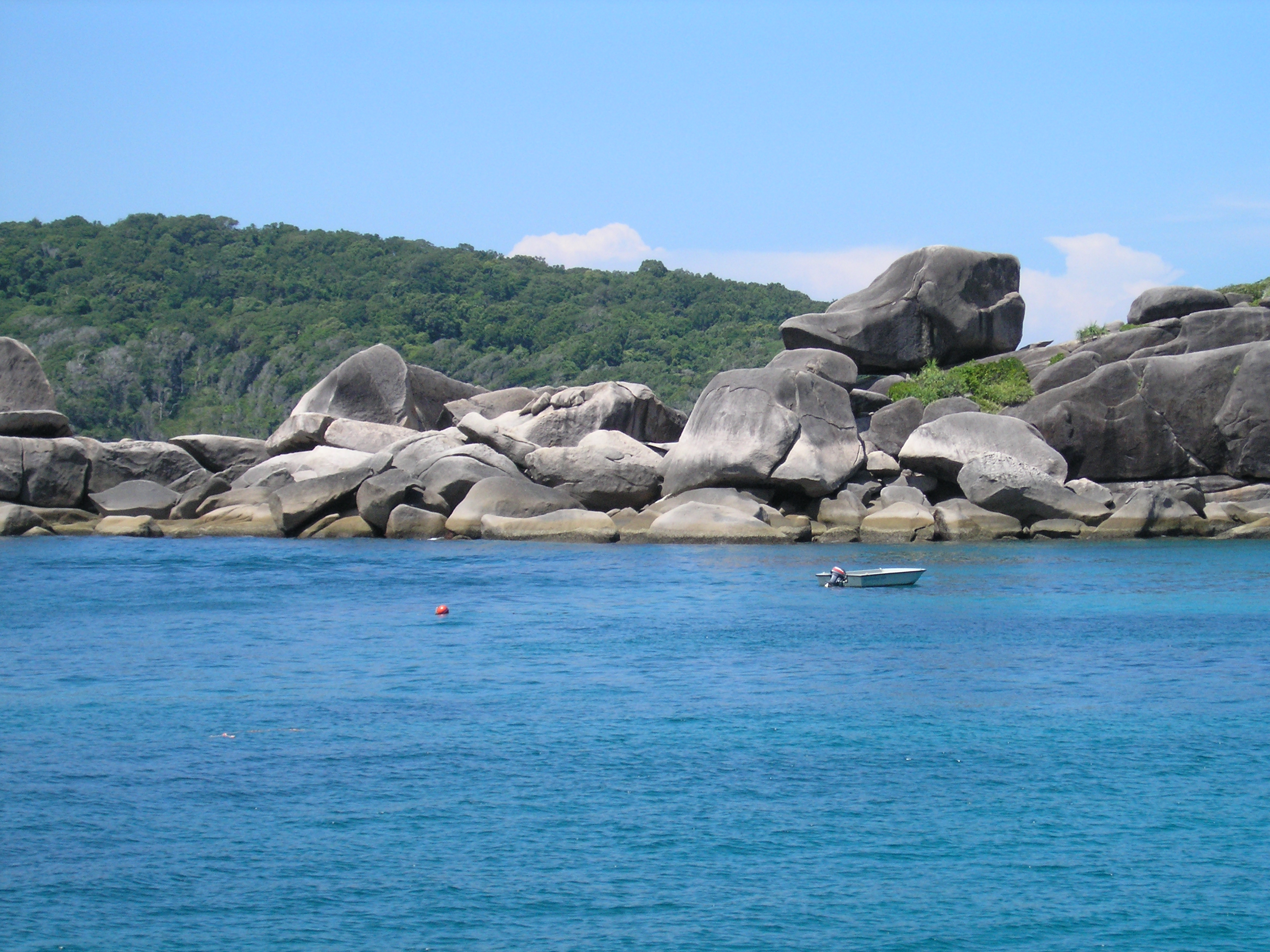 Donald Duck Rocks