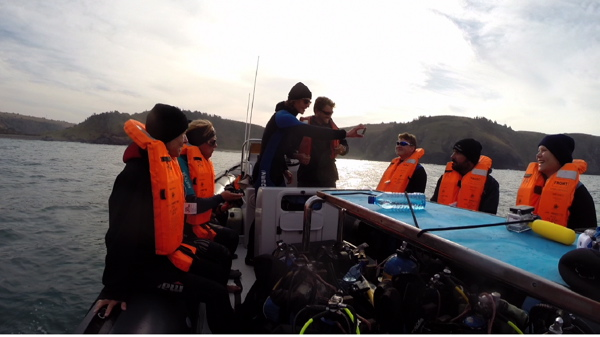 Sardine Run - Dive briefing in the boat
