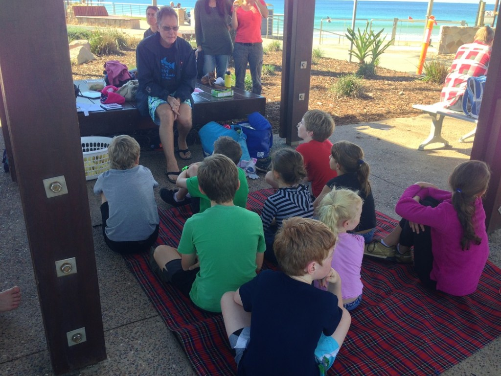 """The moment when the """"What's it like to dive with sharks show and tell"""" was upstaged by tuna, sharks and dolphins both sides of the shark nets at Alexandra Headland Beach"""