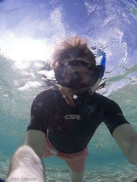 Friendly fish - Cayo Coco, Bay of Pigs