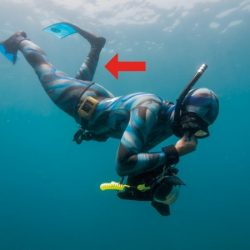 Finning advice for freedivers - knee rotation