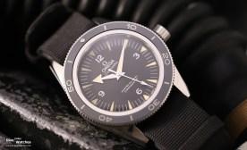 Omega bietet aber zusätzlich auch Nato-Bänder an (gegen Aufpreis)