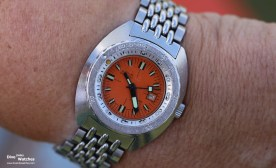 Doxa_Nymph_HTG_Meeting_2017