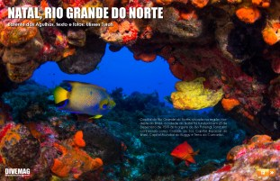 divemag64_Page_13