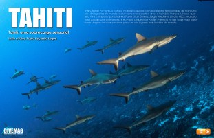 divemag67_Page_13