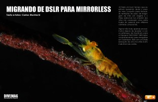 divemag67_Page_46