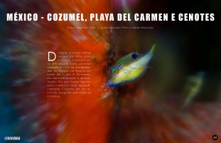 divemag71w_Page_43