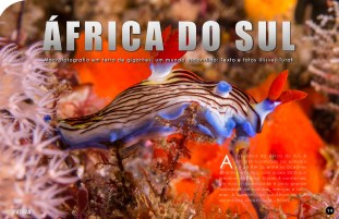 divemag72_Page_15