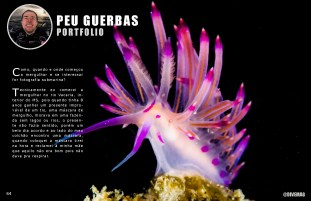 divemag72_Page_65