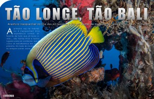 divemag75w_Page_15