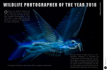 divemag80_Page_61