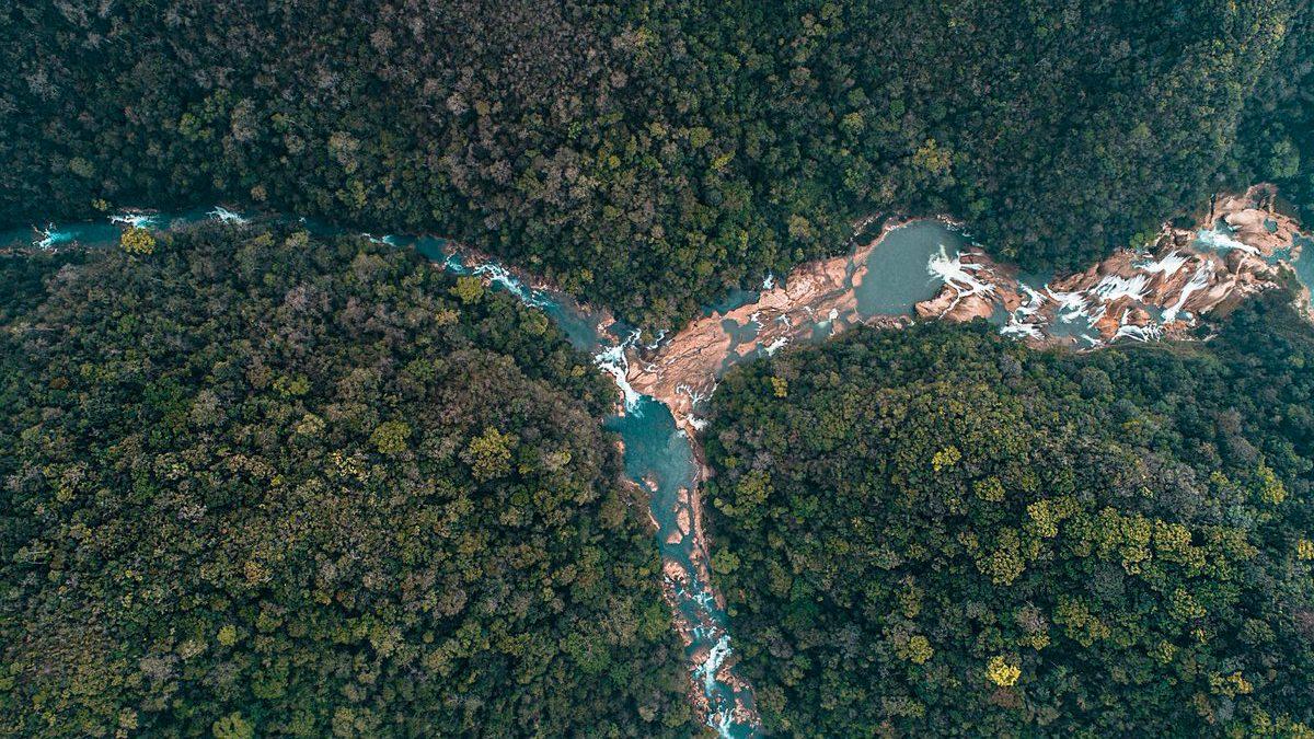 Así se ve la deforestación de la Selva Lacandona desde las alturas