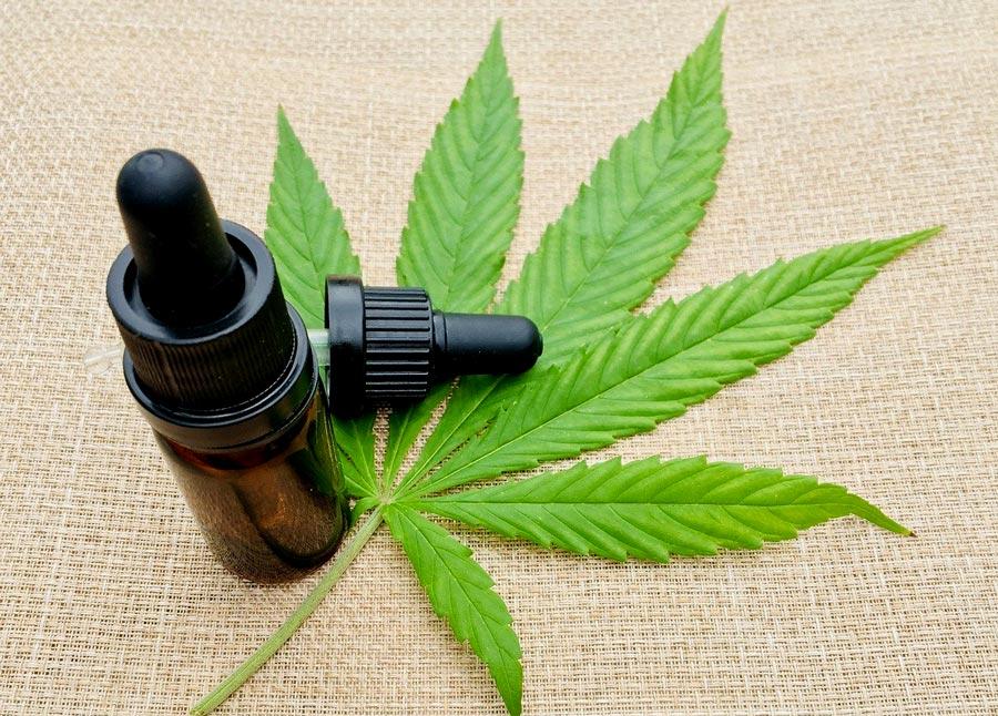 En México, Senado aprueba despenalización de la mariguana