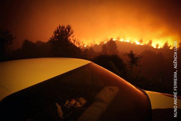 Forest Fire | André Ferreira | Spot News