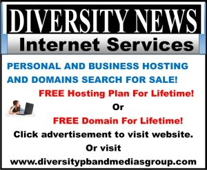 Diversity News Internet Services