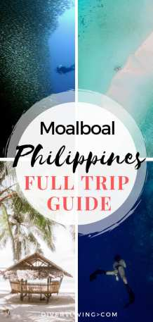 Moalboal Itinerary
