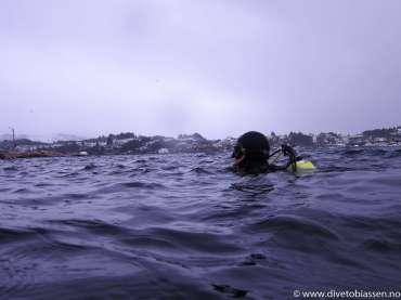 Dykker i overflaten, snø, (PADI Tørrdraktskurs 4. august)