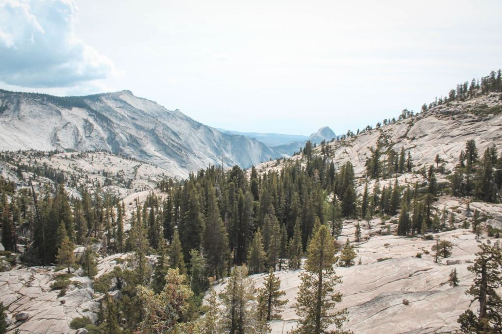Tioga Road - Olmsted Point
