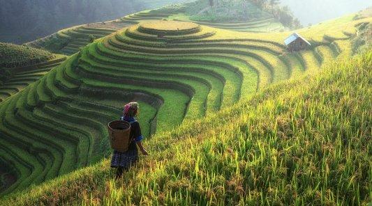 Nachkauf: CHINA EVERBRIGHT ENVIRONMENT GROUP