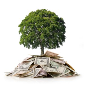 growing-money-tree-with-compound-interest