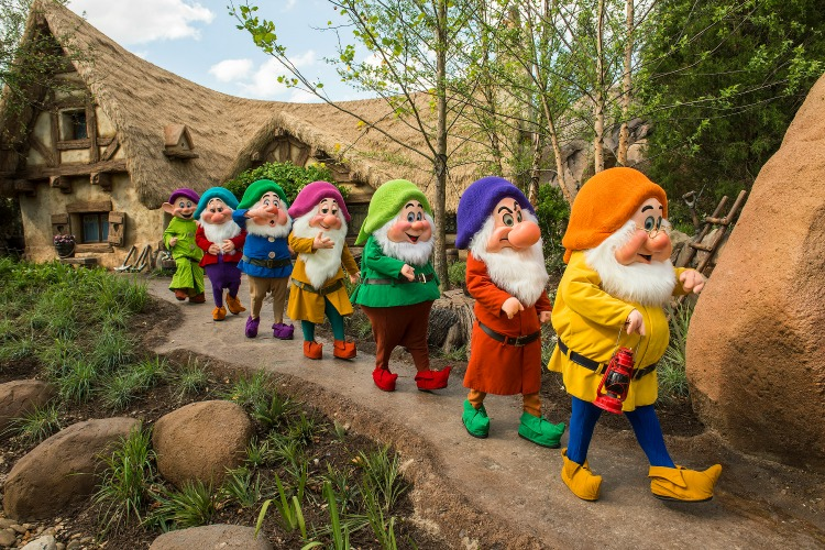 Seven Dwarfs Mine Train 5