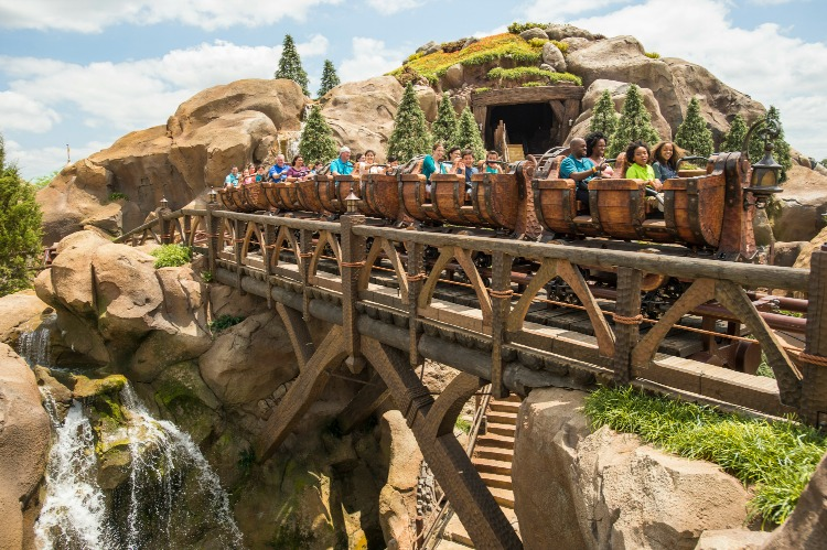 Seven Dwarfs Mine Train 8