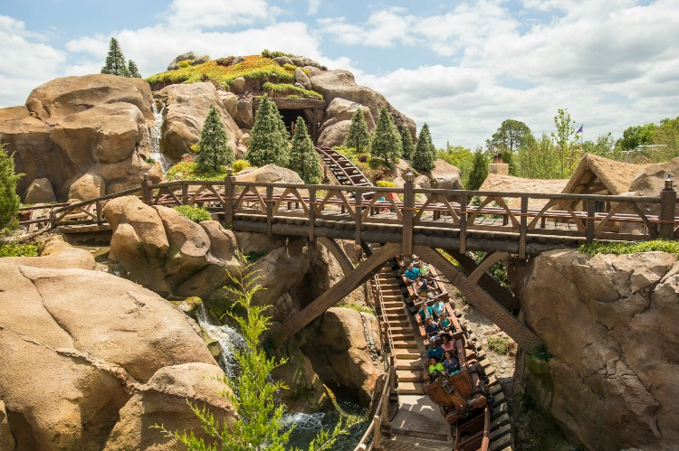 Seven Dwarfs Mine Train 9