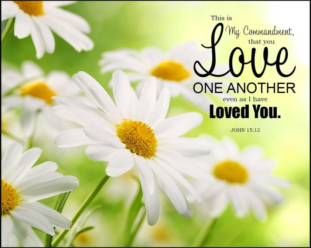 My command is this: Love each other as I have loved you. John 15:12
