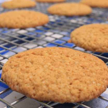 gluten free ginger spice cookie baking mix