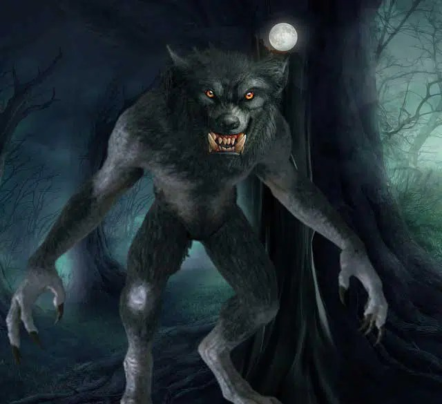 Wolf or Wolfman? by JL Merrow