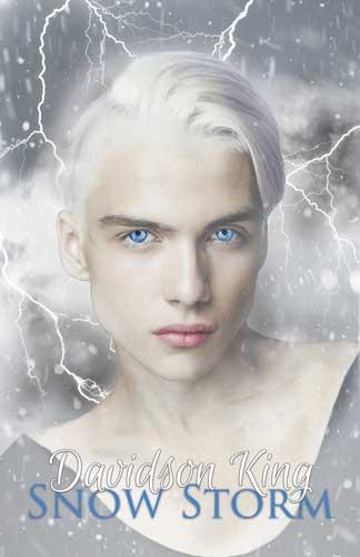 Snow Storm EBook Cover4