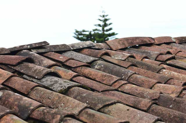 Home Maintenance Tips You Don't Want To Forget