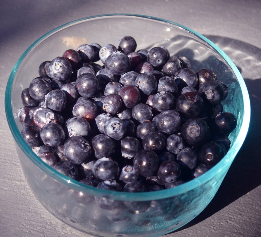 blueberries-in-bowl-1
