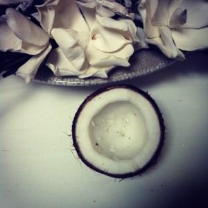ontgeurde-kokosolie