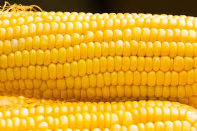 What You May Not Know About Corn