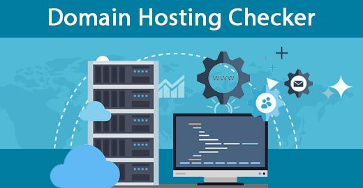 Best Domain Hosting Check Tool