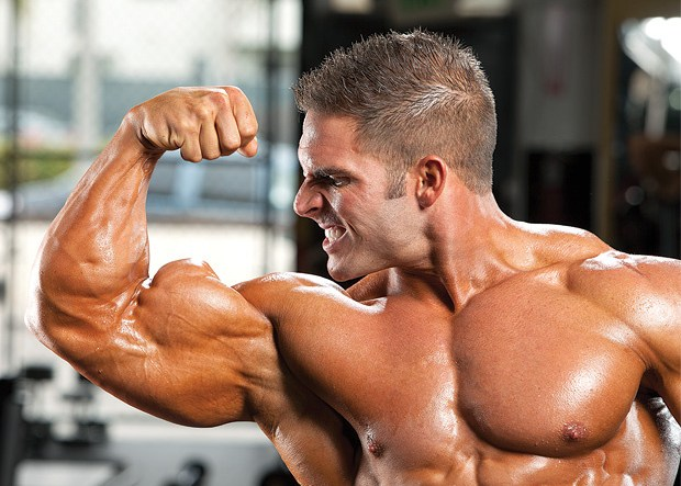 Top Best Places to Purchase Steroids You Should Know About