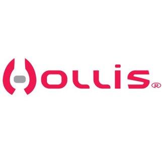 Hollis logo