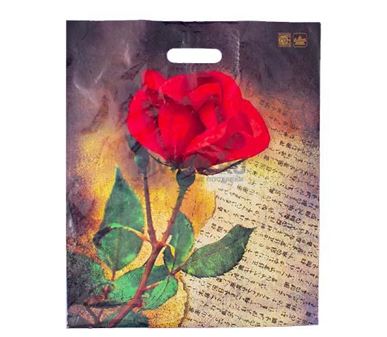 Пакет 45х38 Китайская роза 50 шт