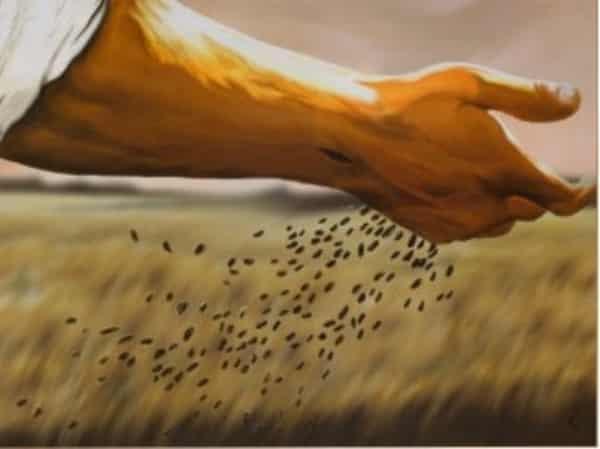 sementes a beira do caminho mao de jesus cristo lei das medias parabola do semeador
