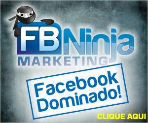 magnet system facebook fb ninja marketing