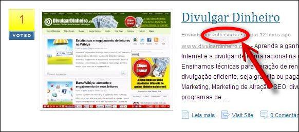 link perfil divulgar blogs