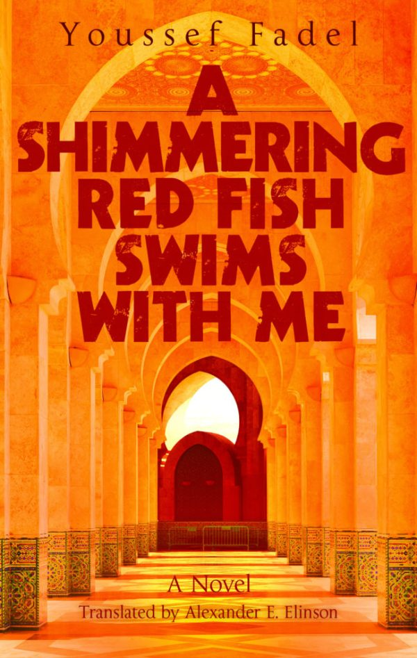 Shimmering Red Fish Swims with